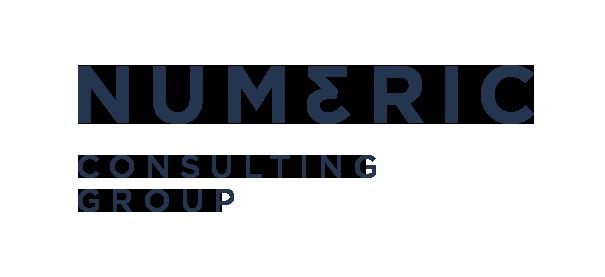 rede-do-empresario-negocios-servicos-gestao-numeric-consulting-group-2